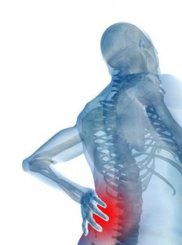Sickness Absence Caused by Back Pain